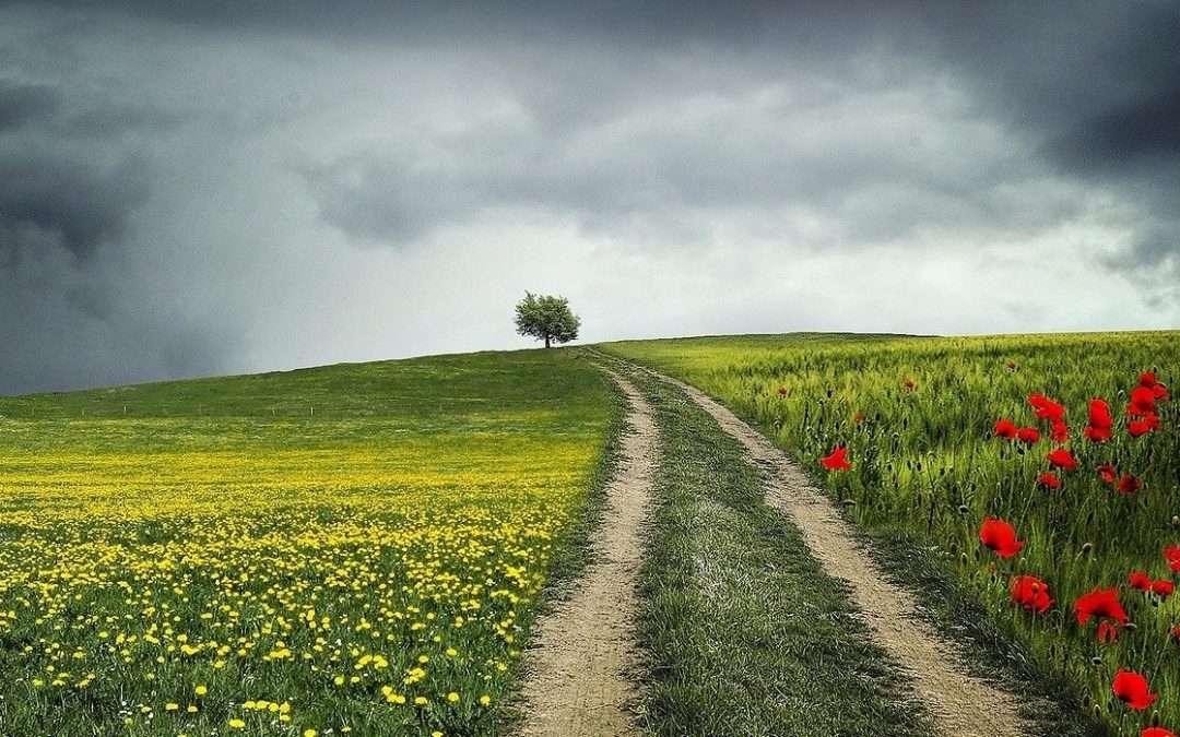 Using Your Mood Barometer To Bridge The Gap